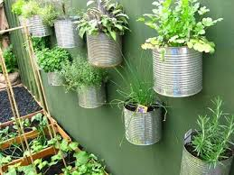 Coffee Can Herb Garden
