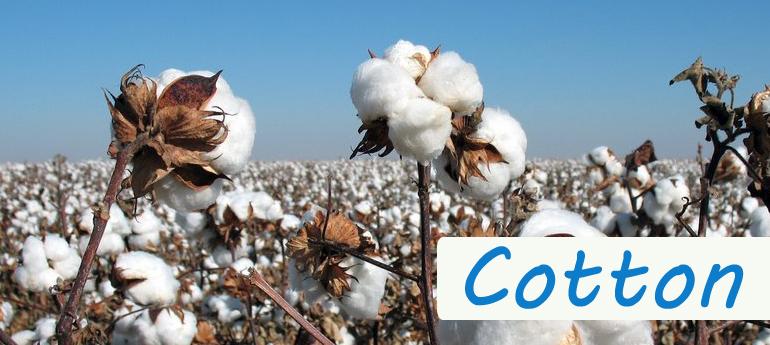 100% cotton thermal underwear